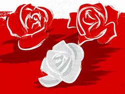 Logo_Rosen_edited